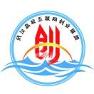武汉高校互联网创业联盟