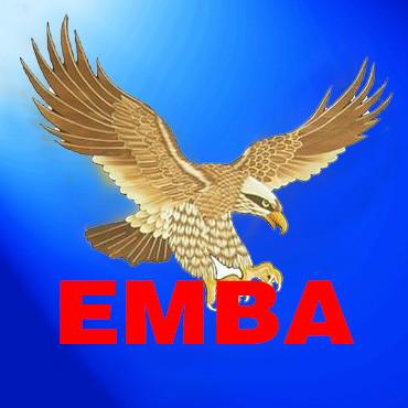 EMBA视野头像图片