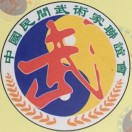 佛山武术协会南拳发展中心
