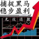 黑马涨停股票研究院