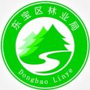 东宝区林业局