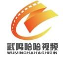 武鸣哈哈视频