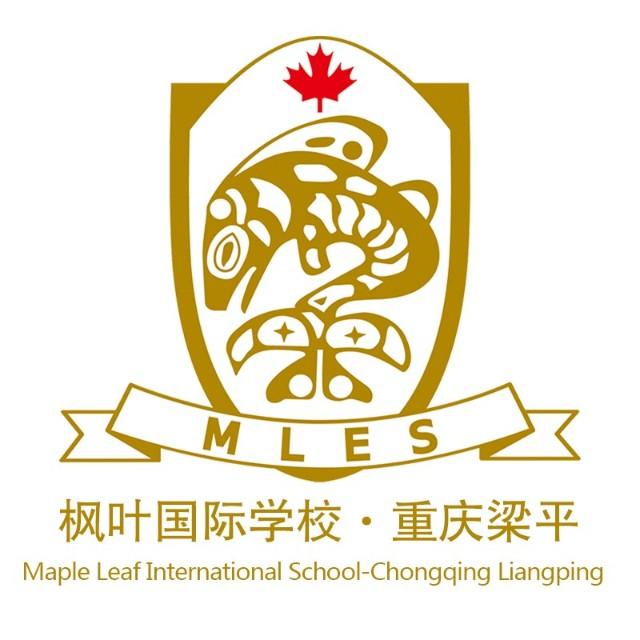 重庆市梁平枫叶国际学校