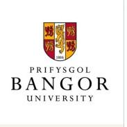 班戈大学中国