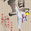 台前弘武跆拳道散打