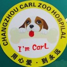 卡尔宠物CARL