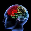 脑血管病与三高症