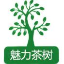 神秘茶树魅力竹乡