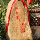 广西老木棉匠园