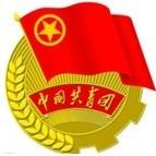 重庆市武隆县共青团