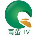 北林青萤TV