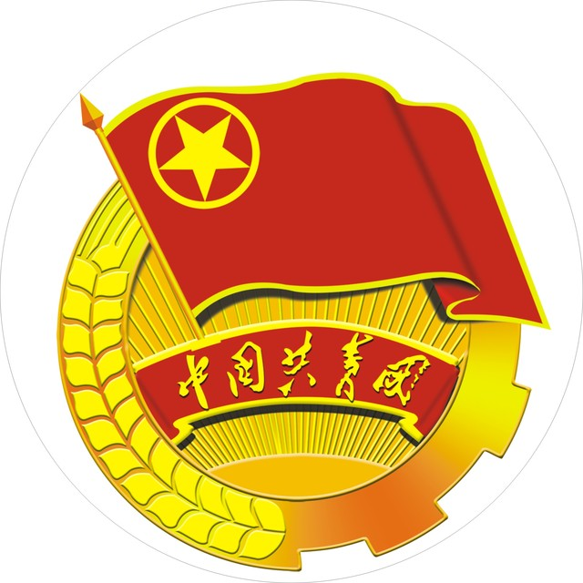 重庆市经信委团委