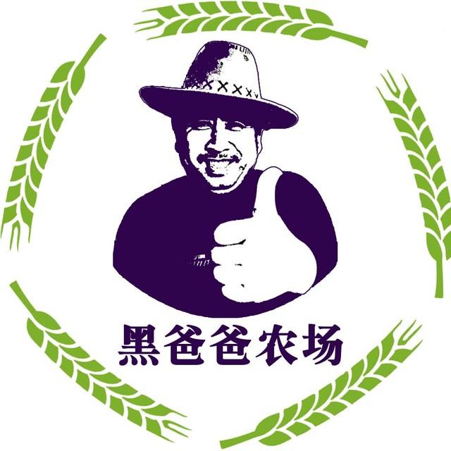 健农达公社头像图片