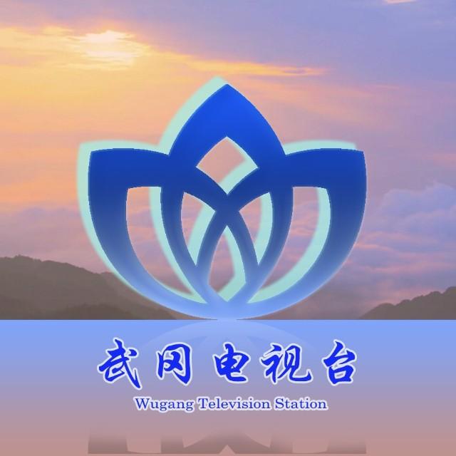 武冈电视台