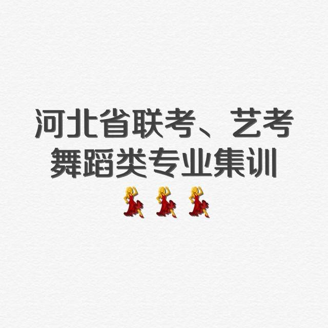 河北省联考艺考专业集训