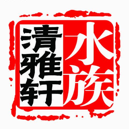 清雅轩水族头像图片