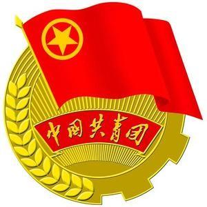 安徽省直团工委