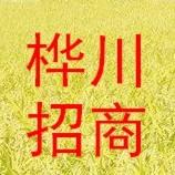 黑龙江省桦川县招商局