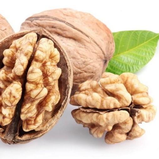 安徽省经济林产品质量检测
