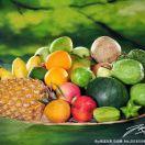 A苏州园区时令水果基地
