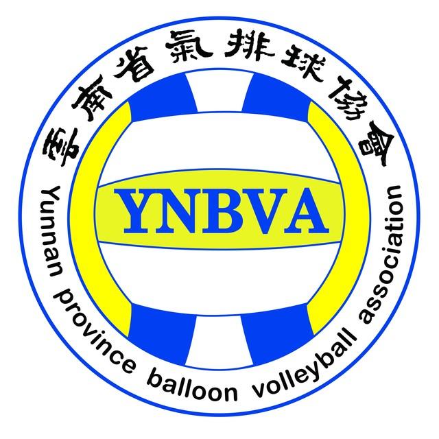 云南省气排球协会