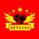 鹤壁市拳击协会微信头像