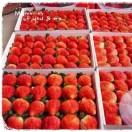 鲜草莓发售