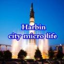 哈尔滨城市微生活