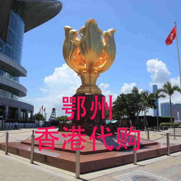 鄂州香港采购
