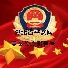 湖北省专案大队