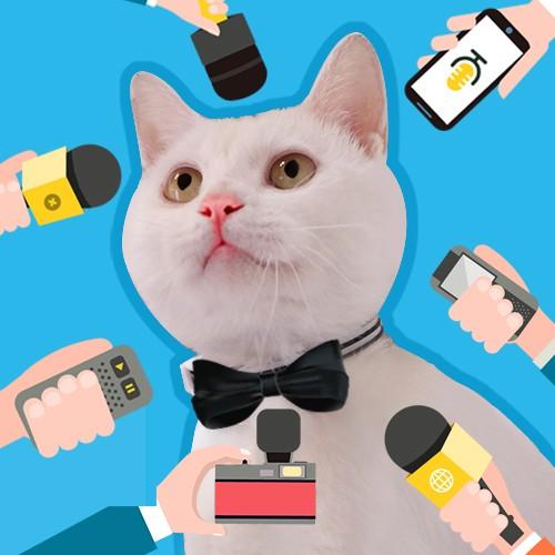 把话筒递给猫