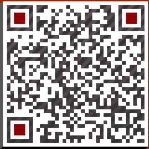 贵州省黎平县特产平台