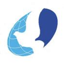 安徽和平国际旅行社