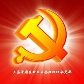 上海市浦东新区社会组织综合党委