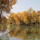 喀尔曲尕乡阿瓦提村