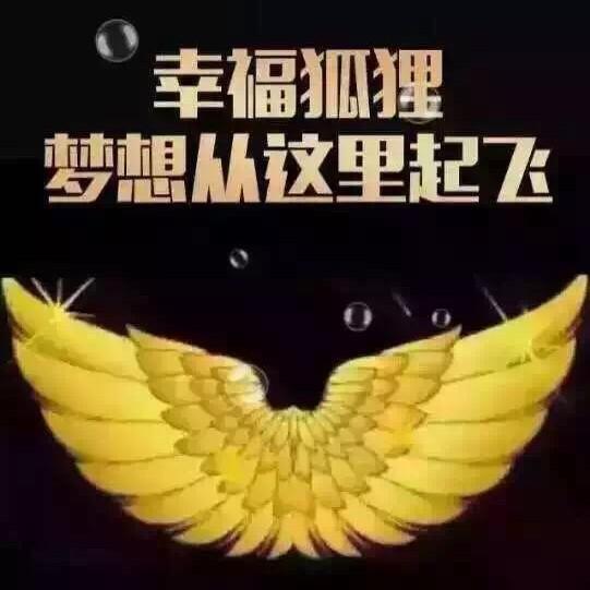 香港幸福狐狸冠军团队