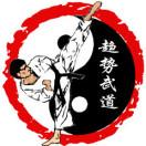 河北新趋势武术跆拳道俱乐部