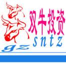广州双牛投资