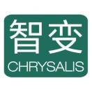 智变商务咨询Chrysalis