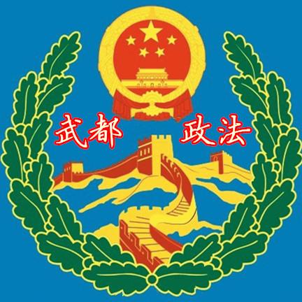 陇南武都政法委