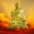 佛与传统文化因果关系