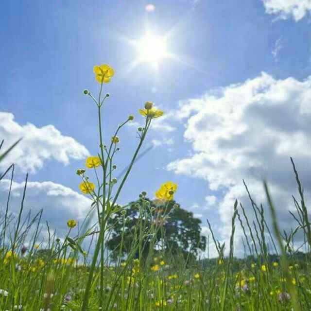 。。我阳光,我快乐
