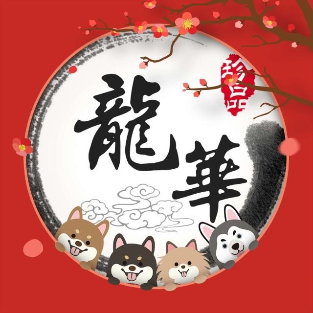 云南龙华宠物用品采购平台