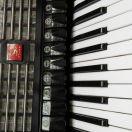 accordionist 6 fandeluxe Image collections
