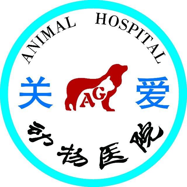 文山关爱动物用品商城