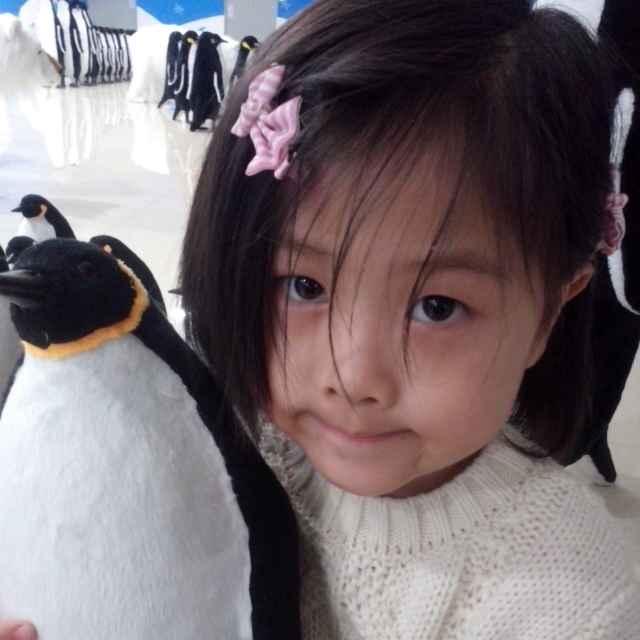 Lily-刘