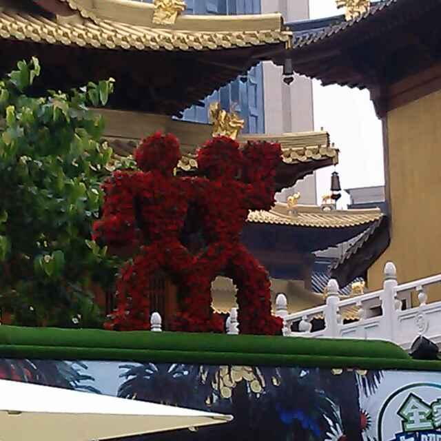Avatar - 沙漠玫瑰