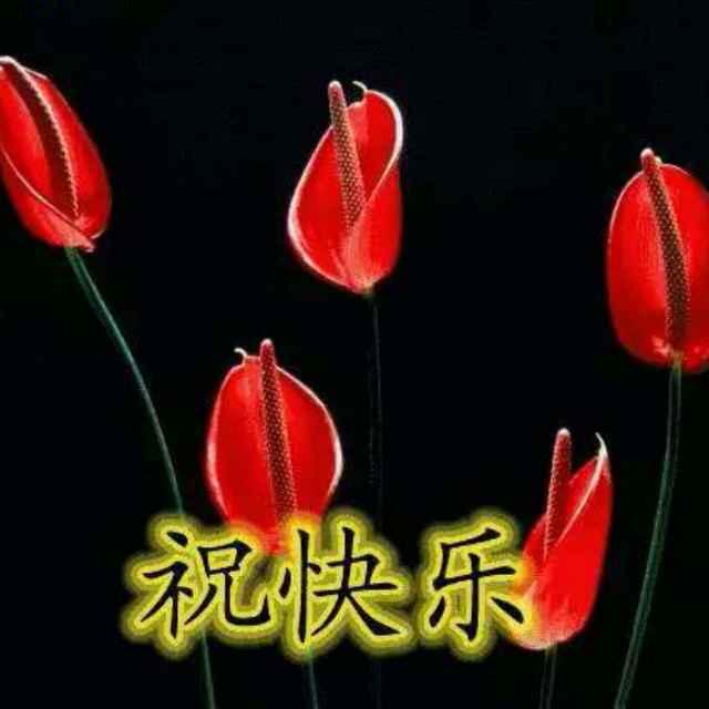 谢林昌150639010