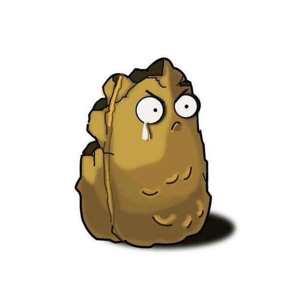 坏土豆不哭