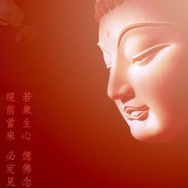 佛教三宝智慧人生